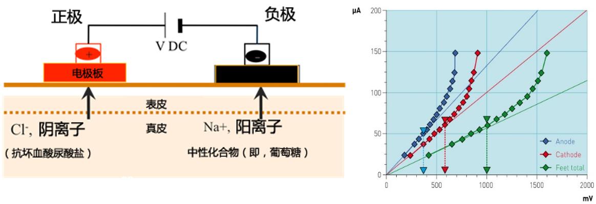 反向离子电渗与计时电流法